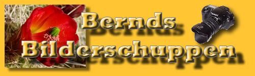 Bernds Homepage